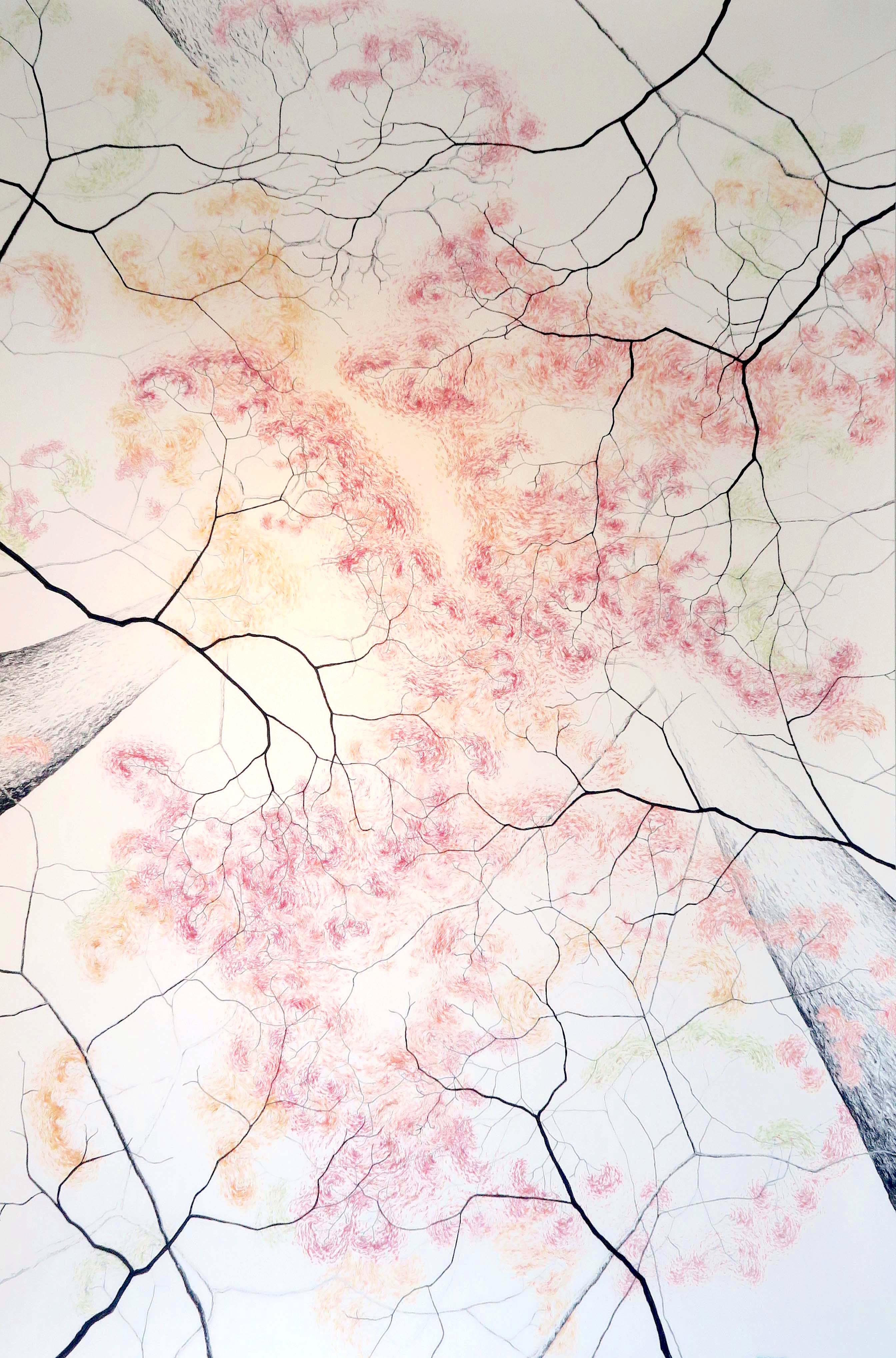 Sigrid Nora - Zonder titel 1 2017 150 x 240 cm - klein